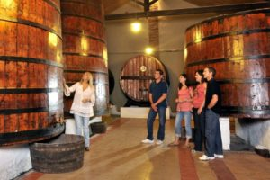 A group visiting a wine producer in Somontano Spain on Cooking and Walking Holidays Spain