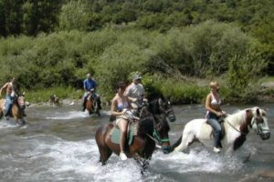 Horses and riderson Tailor Made Activity Holidays Spain
