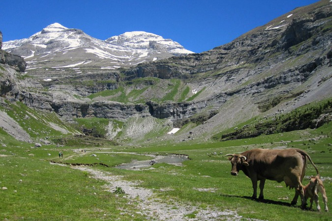 View of the Ordesa Valley on Self Guided Walking Holidays Pyrenees