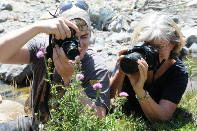 Photographing a butterfly on Special Interest Holidays Spain