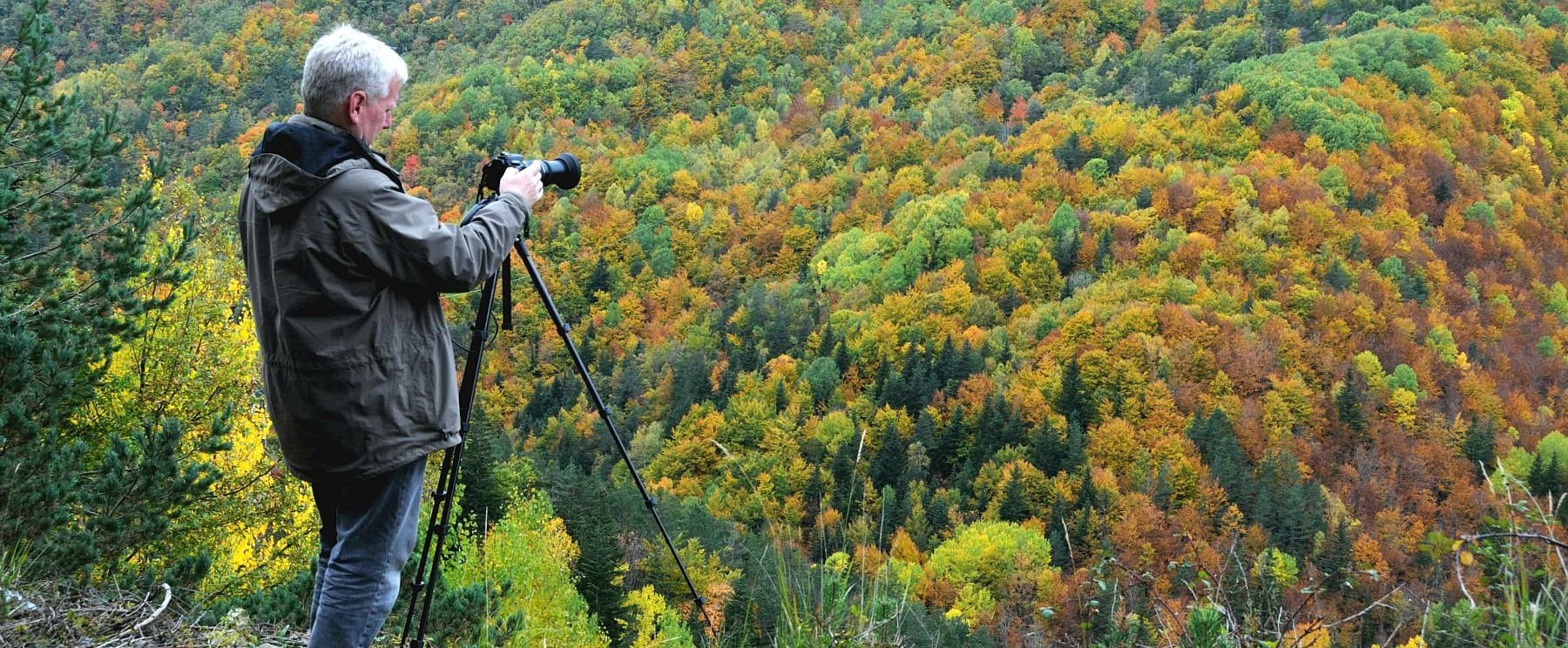 A photographer taking a shot of the autumn colours in a valley in the Pyrenees on the Photography Holiday Spain with Aragon Active
