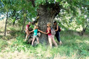 A group of yogis hug a very old oak tree in the Pyrenees on the Yoga Meditation Retreat Spain with Aragon Active