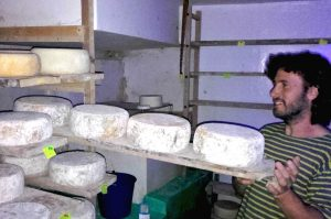 Jorge a local cheese producer in the Pyrenees checking the cheeses on Aragon Active Cooking Holiday Spain