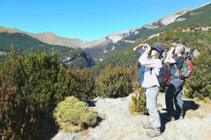 Three hikers stop and look to the sky with binoculars at the sight of a bearded vulture in the Spanish Pyrenees on our Guided Walking Holiday Spain