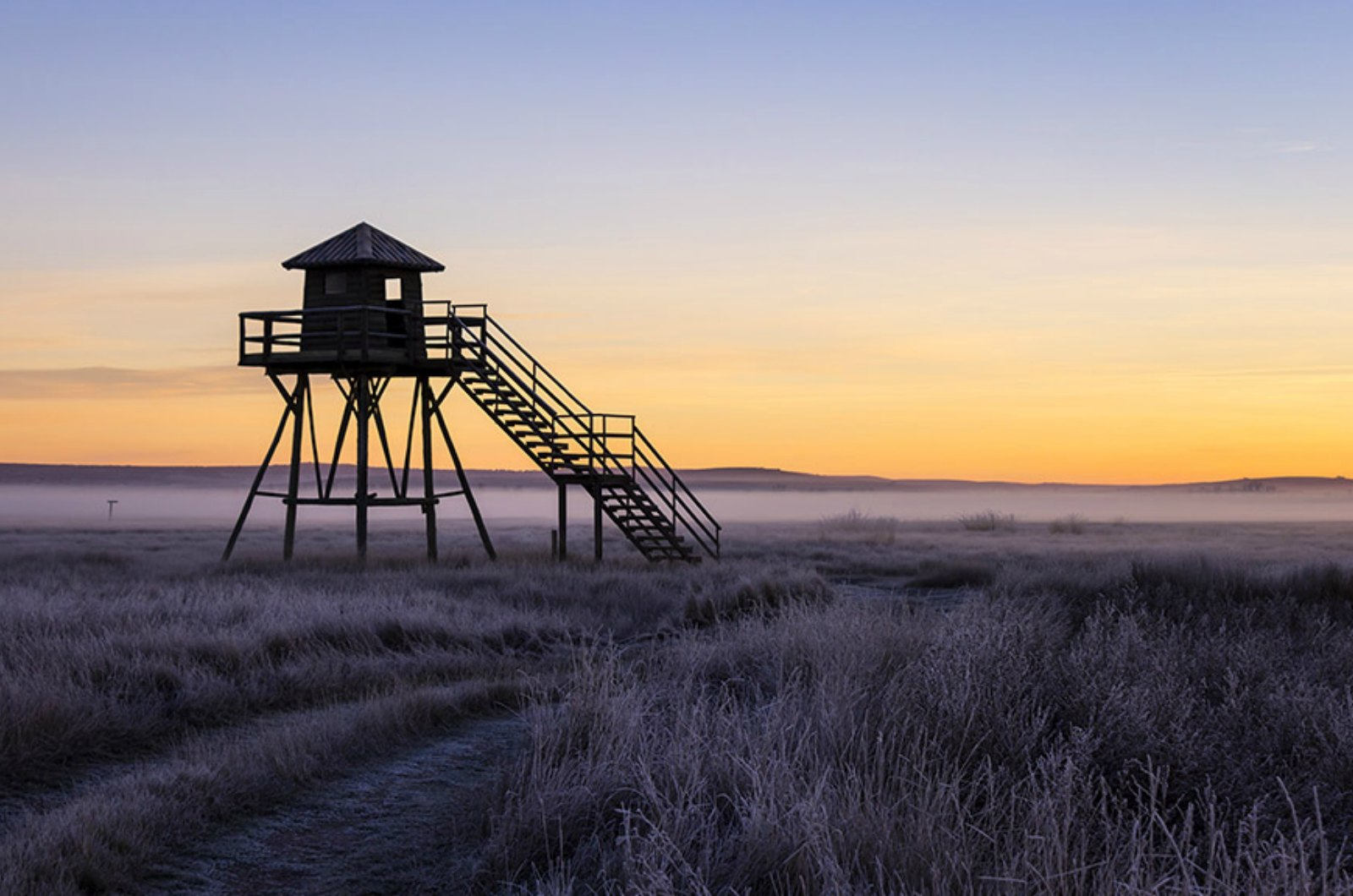 Dawn breaks on the reed beds at gallocanta with the hide on stilts a silhoutte against the sky on our Birds of Northern Spain trip in the Spanish Pyrenees