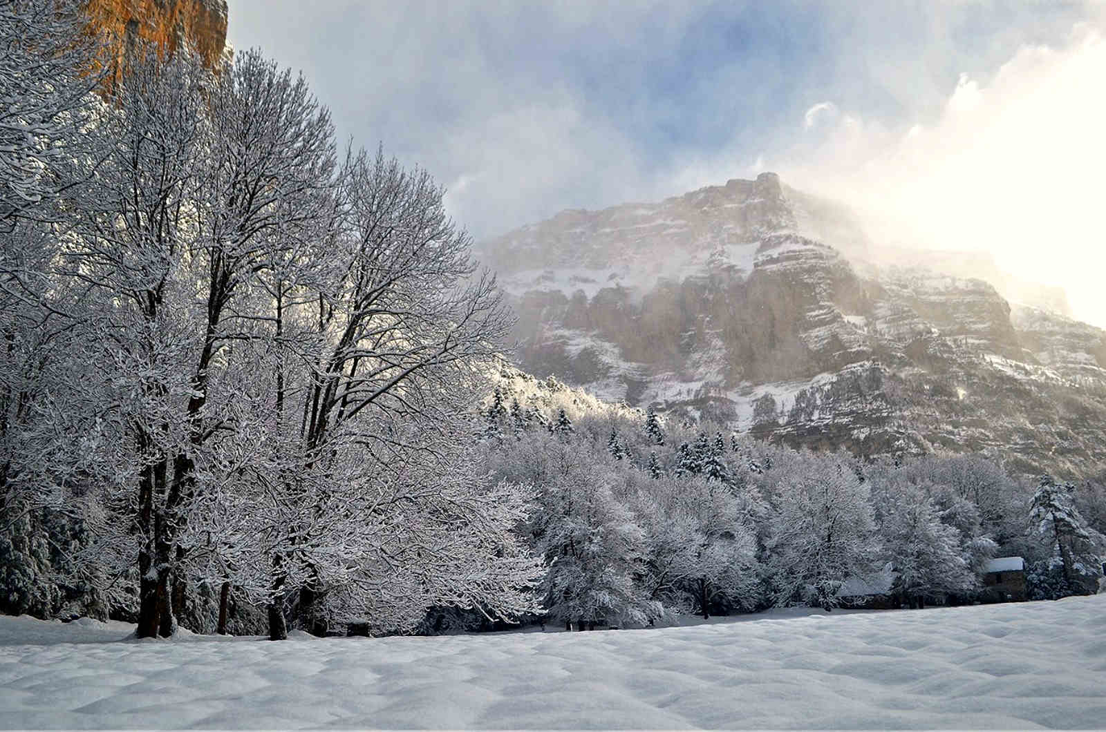 A beautiful photo of snow covered trees in the Ordesa valley Spanish Pyrenees on our Snowshoeing Holidays Pyrenees
