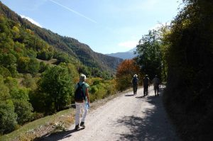 The end of our walk as the students return on a gravel track in the Spanish Pyrenees on A view above the Añisclo canyon which we visit on Aragon Active Learn Spanish Holiday