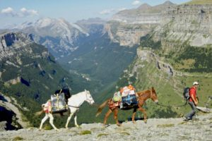 Mule trekking on tailor made activity holidays spain