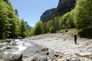 The river Bellos in the Ordesa National Park on Aragon Active Tailor Made Activity Holiday Spain