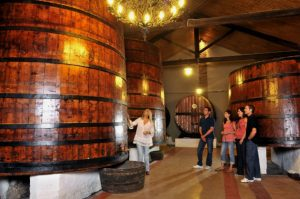 Visiting a bodega in the Somontano region of the Pyrenees on Aragon Active Self Guided Walking Holiday Spain